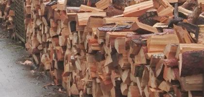 Kamin- und Brennholz